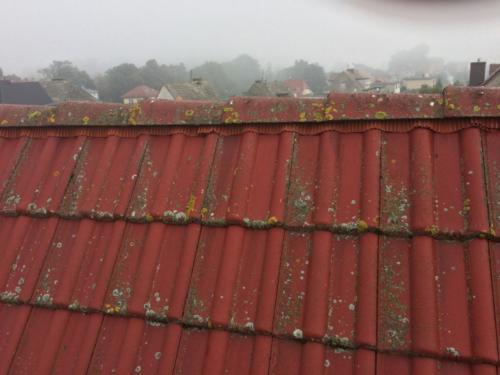 Mycie elewacji i dachów. Prace na wysokości. Sprzątanie. Lębork